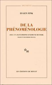 fink de la phénoménologie